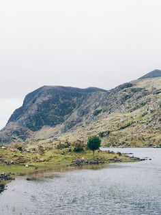 Beautiful Killarney National Park in County Kerry, Ireland. This spot is near the Ring of Kerry drive!