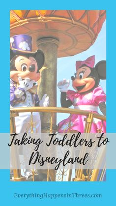 We went to Disneyland with toddlers and had a great time. We learned some great tips for next time and to share with you.