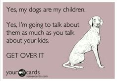 Our dogs and cats are our fur-kids and kids...fur-babies...part of our personal mojo...love them...so yes, please do get over it...or share how much you love your pet family too...now we're talking!