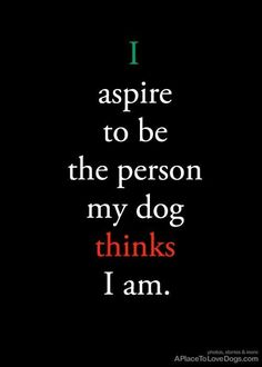 I aspire to be the person my dog thinks I am. #dogs #dogquotes