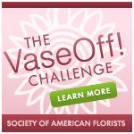 Bonggamom Finds: Vote in the second annual VaseOff! Challenge (and win a $50 AmEx giftcard!)