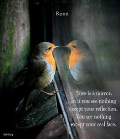 rumi love is a mirror. In it you see nothing but your reflection. You see nothing except your real face.