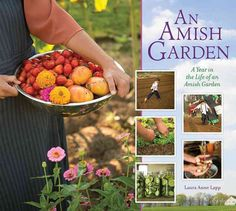 Gorgeous photographs illustrate an Amish woman's diary of six working Amish gardens, from January through December. This close-up of a world seldom seen shows how the seasons and Amish life work rhyth
