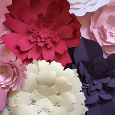 Paper Flowers these gorgeous extra large blooms will be available in my shop very soon! Both ready made and in DIY kits - contact me for more info! #paperflora #paperfloradesigns #largepaperflower #flowerwall
