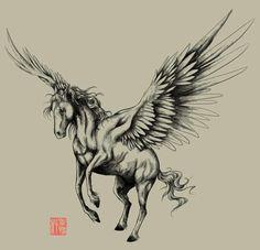 Pegasus                                                                                                                                                                                 Más