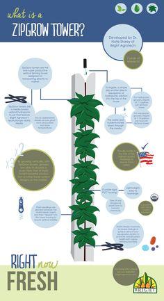Wieże ZIP-GROW firmy Bright Agroteh idealne do akwaponiki i hydroponiki