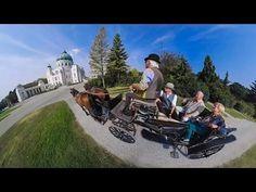 360-Grad-Video: Mit dem Fiaker durch den Zentralfriedhof