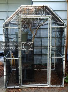 I had a lot of people ask me for plans for my pvc cage I built. These were put together after I built mine so it's a bit rough, but. Chameleon Enclosure, Reptile Enclosure, Reptiles, Lizards, Reptile Cage, Lizard Cage, Iguana Cage, Sugar Glider Cage, Sugar Gliders
