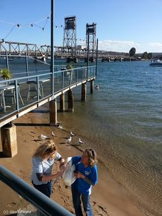 """Sea Bird Rescue Demonstrations at """"On the Pier"""" Batemans Bay Australia South Coast Nsw, Beautiful Places In The World, Sea Birds, Travel Images, South Wales, Continents, Awesome, Amazing, The Good Place"""