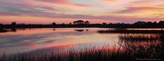 Sunset on the Bayou Cover Photo