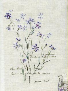 Fleurs de Bleuets