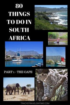 Planning a visit to South Africa? Thinking of what to add into your itinerary? Well have a look at 80 things to do and see in South Africa! This is the first 20 - things to see and do in the Western, Eastern and Northern Cape! Travel Around The World, Around The Worlds, Visit South Africa, Travel Destinations, Travel Tips, Africa Destinations, Travel Articles, Travel Advice, Budget Travel