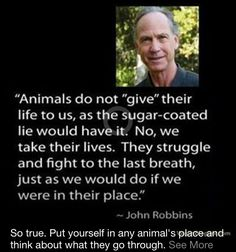 Choose compassion and go vegan!