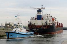 The Eddy 1 tugboat in IJmuiden