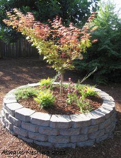 Do something like this around the pecan tree