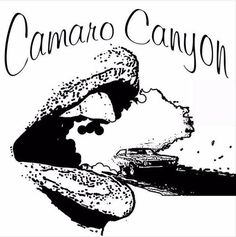 The loud uplifting music will be loved by all music enthusiasts. Camaro Canyon belongs all the way from Canada and his extraordinary kind of music creation will give you goose bump.