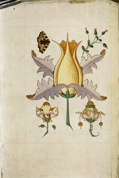 The Tudor Pattern Book __ Bodleian Library, Oxford University.