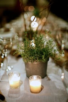Like the twist...it looks like an herb. mix herbs with flowers in center piece
