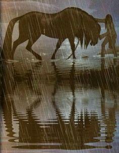 Regina and her horse