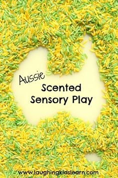 Aussie eucalyptus scented sensory rice for children to play with during Australia Day--thinking about burying stuff from the Aussie toob in it Sensory Activities, Sensory Play, Preschool Activities, Nursery Activities, Work Activities, Sensory Bins, Australia Crafts, Australia Day Craft Preschool, Aus Day