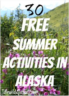 30 Free Summer Activities in Alaska - IdlewildAlaska