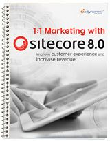 1:1 Marketing with Sitecore 8.0