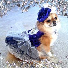 Blue Crush Silk Rosette Tutu Dress by OrostaniCouture on Etsy, $168.00