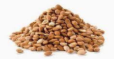 vitamina B17, i semi di albicocca