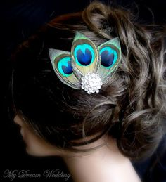 Peacock feather hair clip -- neat way to keep the points... the feathers are upside down!