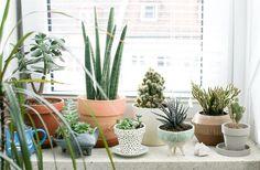 Verde que te quiero verde!   Decorar tu casa es facilisimo.com