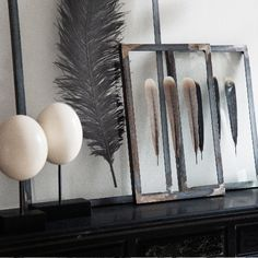 Feathers in the wood frame(Source: enversdudecor)