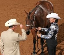 We Ask The Judges: Showmanship Do's and Don'ts
