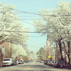 A look at German Village in the spring. Photo by @rebeccaodell