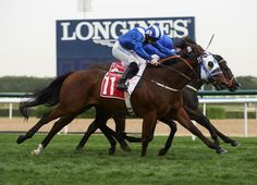 The outsider of the 11-strong field, Fityaan gained the verdict in a three-way tussle for the G3 Meydan Sprint, out-pointing Godolphin's Jungle Cat by a nose in a tight photo-finish.  The 8-year-old winner dwelt slightly as …