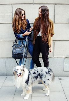 gorganic:  bieb-uh:  twinception:  q'd  ❀ modern/fresh ❀  That dog is better than any fashion accessory
