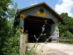 Where to View Fall Foliage in Northeast Ohio: The backroads of Ashtabula County