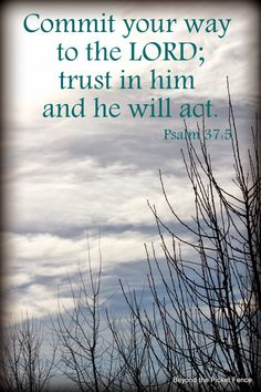 Psalm 37:5 (ESV) ~ Commit your way to the LORD; trust in him, and he will act.  Learn Spanish http://learnspanishthroughbible.blogspot.com  Try it, practice it and spread the Word of God.