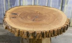 Live Edge Round Cut Large Ash Table Top Tree Log Slice 20829