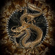Dragon Embellishments 龍