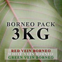 BORNEO PACK = 1KG EACH  GREEN VEIN, WHITE VEIN & RED VEIN