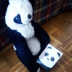 #Panda power! #softtoys #animales #peluches #pelucheando