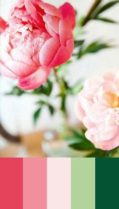 Color Studies 56, Jenna Alcala for Matchbook Magazine