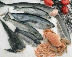 Oméga-3 contre polluants: quels poissons privilégier? |Natura Sciences