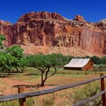 Capitol Reef National Park, UT - it was raining the day we stopped there, so we didn't get to hike.  I'll have to go back someday.