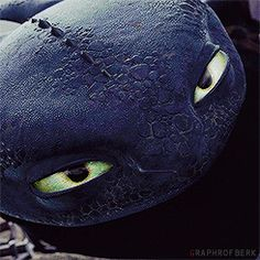 Toothless and Hiccup Toothless And Stitch, Hiccup And Toothless, Toothless Drawing, How To Train Dragon, How To Train Your, Dreamworks Animation, Disney And Dreamworks, Dragon 2, Night Fury Dragon