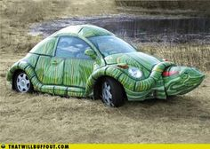 The classic Turtlebug. Omg lol