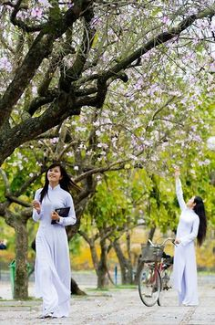 Vietnamese Traditional Dress, Traditional Dresses, Asian Woman, Asian Girl, Ao Dai, White Girls, School Uniform, White Dress, Style Inspiration