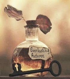 bottle perfume cologne, amber orange color , two leaves top, Named Everlasting Autumn, yep Mabon, Samhain, Perfume, Autumn Cozy, Belle Photo, Fall Halloween, Halloween Pics, Happy Halloween, Halloween Party