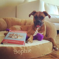 Sophie is taking her education very seriously