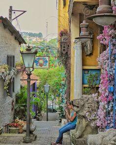 """Embu das Artes - SP por @tkabbour .   """" Você não pode andar pelo Brasil sem ver árvores as flores  em quase todos os lugares. E em Embu das Artes não é exceção.""""  Siga e use #Brazil_Repost ou  # em suas fotos e apareça aqui também!  #Brazil #Paisagem #nature #mtur #all_shots #viagem #instagood #natureza #flowers #sunsets #happy #life #sun #goodvibe #igers #SaoPaulo #Campinas #EmbudasArtes #fun  #trip #travel #gopro #sunset #viajando #Brasil #viajar #SP #bomdia  Compartilhe o seu Brasil com a…"""
